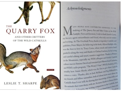 Acknowledgment in The Quarry Fox by Leslie T. Sharpe 2017